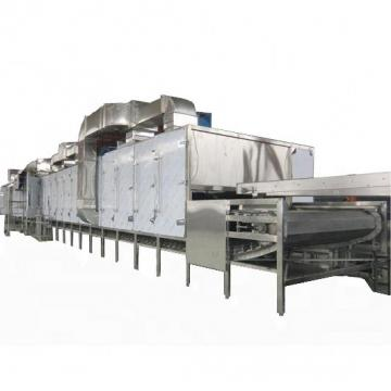 Microwave Vacuum Industrial Dryer/Leaves Microwave Drying Food Dehydrator Low Price