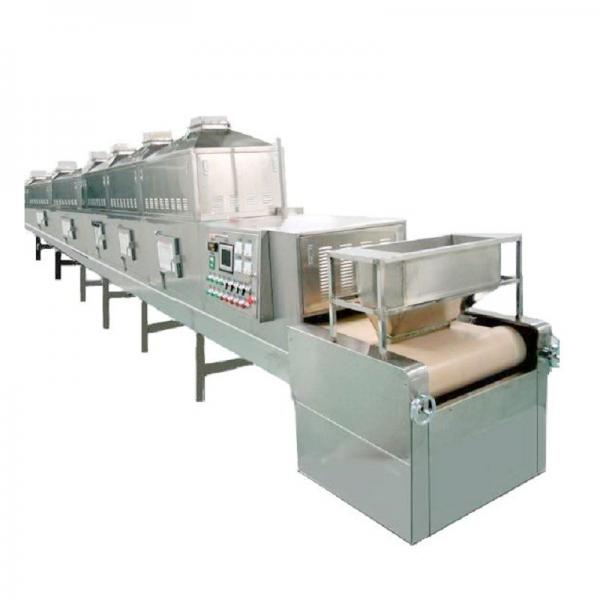 Grape Continuous Mesh Belt Dryer Foodstuff Conveyor Drying Oven with Large Capacity #2 image