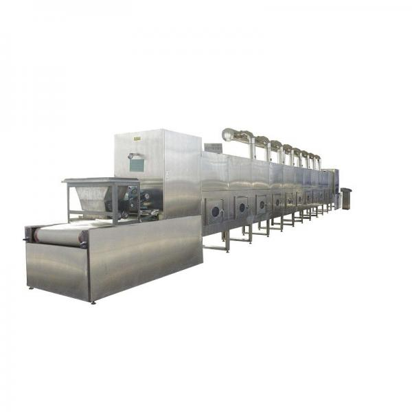 Grape Continuous Mesh Belt Dryer Foodstuff Conveyor Drying Oven with Large Capacity #3 image