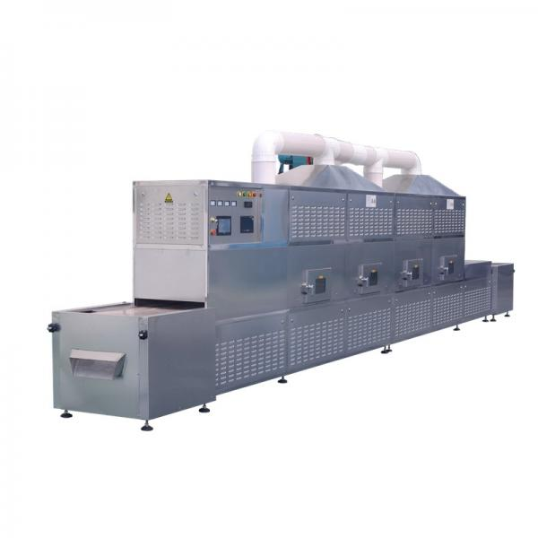 Grape Continuous Mesh Belt Dryer Foodstuff Conveyor Drying Oven with Large Capacity #1 image