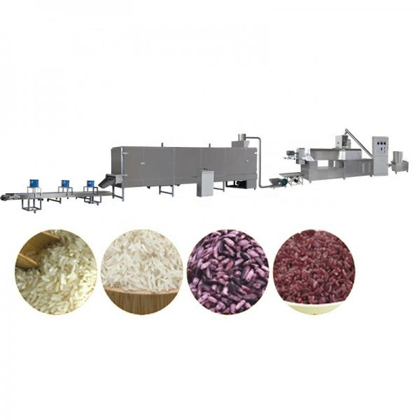 Automatic Artificial Nutritional Rice Factory Price Puff Food Machine #3 image