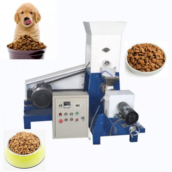 Pet Food Fish Food Processing Line with Extruder to Produce Floating Fish Feed #1 image