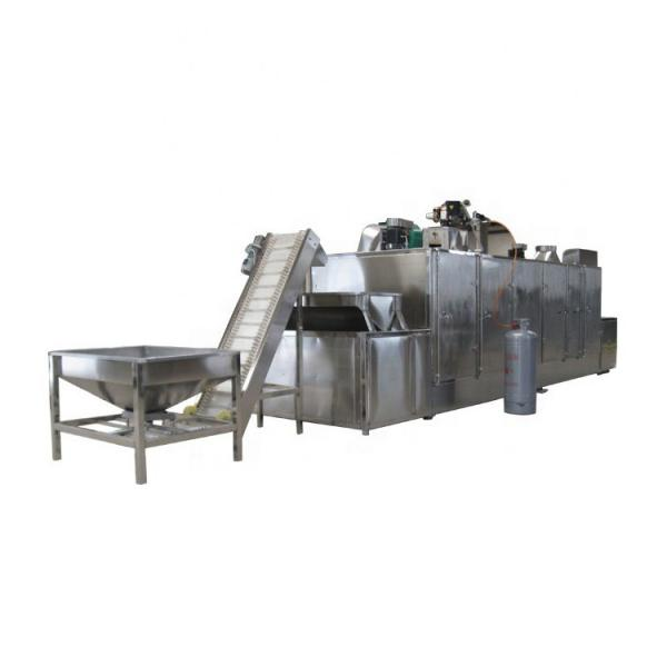 Fully automatic Belt Factory Applicable Industry hemp biomass dryer #3 image