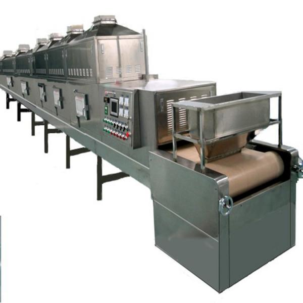 Fully automatic Belt Factory Applicable Industry hemp biomass dryer #2 image